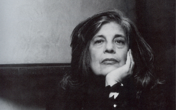 susan sontag regarding